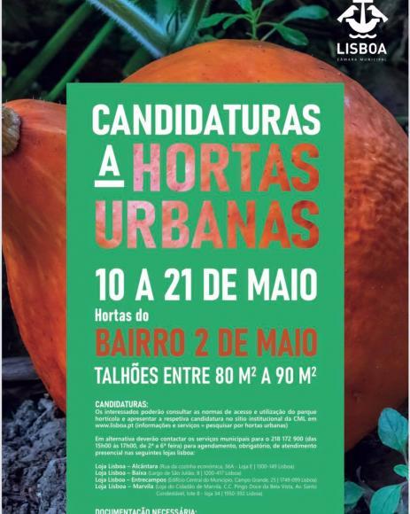 HORTAS URBANAS | BAIRRO 2 de MAIO