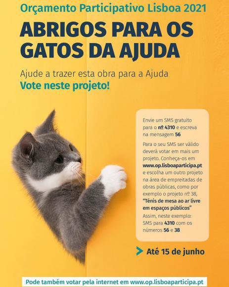 Orçamento Participativo 2021 - Abrigos para os gatos da Ajuda